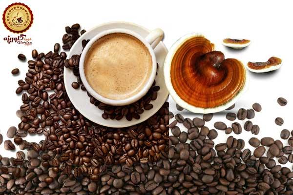 قهوه گانودرما عمده